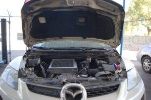 Prado-Quality-Auto-Repair-Mechanic16